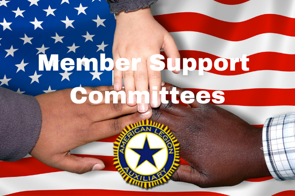 Member Support Committees