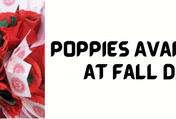 Poppies Available at D.E.C.